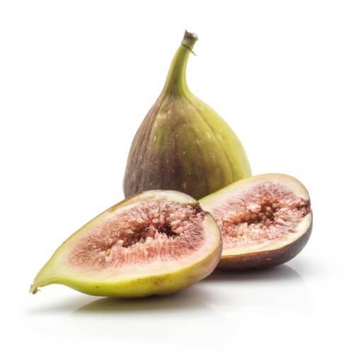 """Figuier Carica """"Kadota"""" (Ficus Carica """"Kadota"""")"""