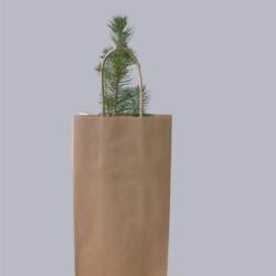 1 sac kraft cadeau
