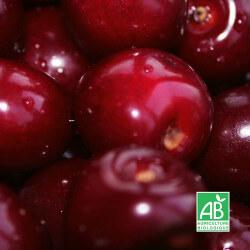 [BIO] Cerisier 'Bigarreau Reverchon'