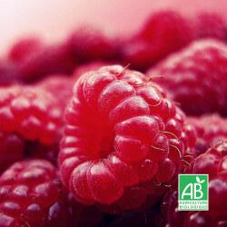 "Framboisier rouge ""Heritage"" (Rubus Idaeus ""Heritage"")"